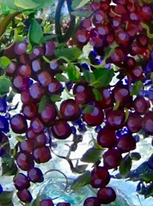 10-24-2018grapes-villa-05